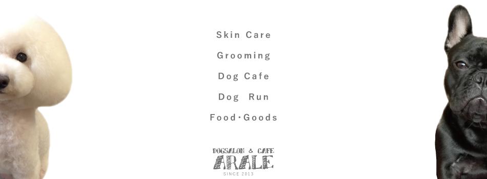 DOGSALON & CAFE ARARE